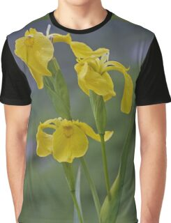 Yellow Flag Iris - Donegal Graphic T-Shirt