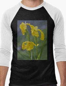 Yellow Flag Iris - Donegal Men's Baseball ¾ T-Shirt
