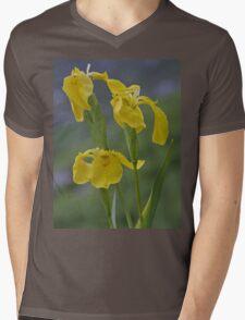 Yellow Flag Iris - Donegal Mens V-Neck T-Shirt