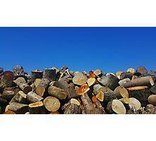 The Blue Skies Log Pile Photographic Print
