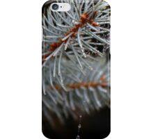 Blue Pine iPhone Case/Skin