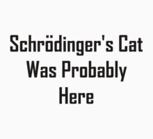 Schrodinger's Cat Was Probably Here One Piece - Long Sleeve