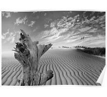 Landscape Tarifa Poster
