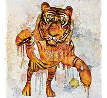 tiger splash ! Photographic Print
