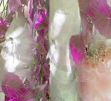 Crimson and Silver by Anivad - Davina Nicholas