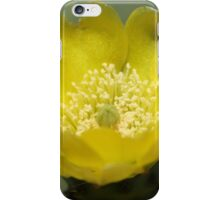 Yellow Cactus Pear Flower iPhone Case/Skin