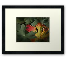 Design in Autumn Colours Framed Print