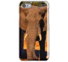 Kruger Elephant iPhone Case/Skin