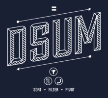 DSUM by FunctionFan