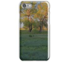 Grasslands at Golden Hour iPhone Case/Skin