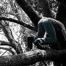 Chaz In The Tree  by korokstudios