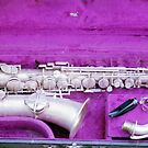 1929 Lyon and Healy Sax by Braydon
