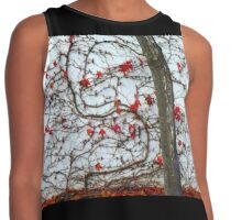 autumnal wall Contrast Tank