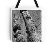"""Towers"" Tote Bag"