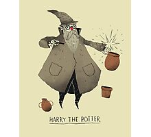 the potter Photographic Print