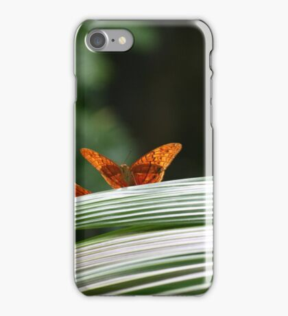 Ready to fly! iPhone Case/Skin