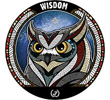 Owl Noctua Wild Totem Photographic Print