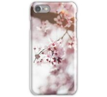 Blossoms 4 iPhone Case/Skin