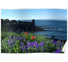 St Andrews Castle Amongst Wild Flowers Poster