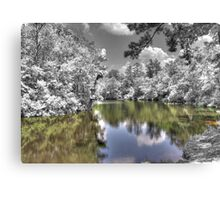 Nature Dreaming Canvas Print