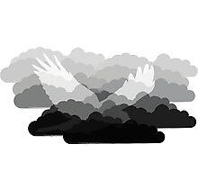 Grey Bird Cloud Photographic Print