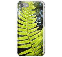 Sunlit Ferns iPhone Case/Skin