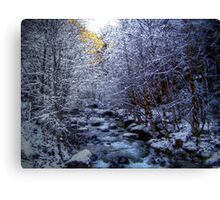 When The Cold Snow Blows Canvas Print