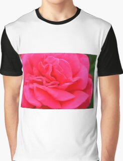Macro on pink rose. Graphic T-Shirt