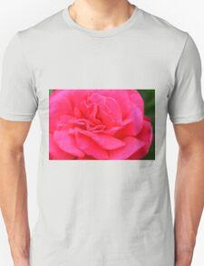 Macro on pink rose. Unisex T-Shirt