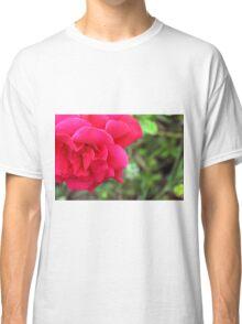 Macro on pink rose. Classic T-Shirt