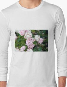 Beautiful small light pink flowers in the garden. Long Sleeve T-Shirt