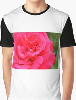 Macro on pink rose. Graphic T-Shirt