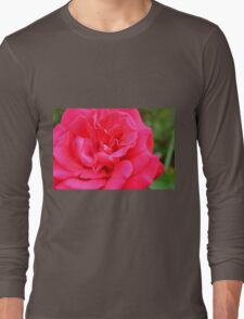 Macro on pink rose. Long Sleeve T-Shirt