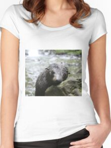 Seal pup daydreams Women's Fitted Scoop T-Shirt