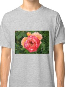 Close up on red and yellow roses. Classic T-Shirt