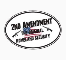 The 2nd Amendment The Original Homeland Security Shirt, Stickers, Posters, Pillows by 8675309