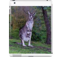 Kangaroo with Joey in her pouch - closeup iPad Case/Skin