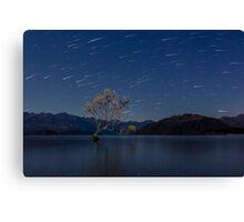 Starry Sky over Lake Wanaka's Lone Willow Tree Canvas Print