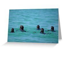 Penguin Paddle Greeting Card