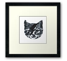 Stardust Cat face Framed Print