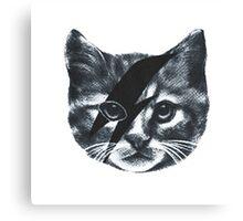 Stardust Cat face Canvas Print
