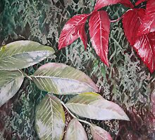 Tropical Foliage by Heather Holland by Heatherian