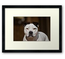 That's my Boy Framed Print