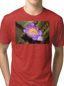 Oil Painting of Open Water Lily Blossom Tri-blend T-Shirt