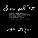 Shakespeare Sonnet No. 23 by Sally McLean