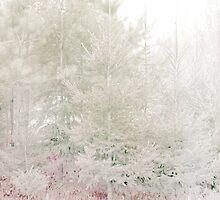Winter Glow by Anivad - Davina Nicholas