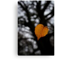 Lonely Little Leaf Canvas Print