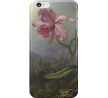Martin Johnson Heade - Two Hummingbirds With An Orchid 1875. Garden landscape: garden view, trees and flowers, blossom,  lotus blossom, botanical park, orchid, wonderful flowers iPhone Case/Skin