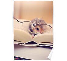 Hamster The Reader II Poster