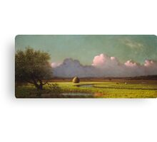 Martin Johnson Heade - Sunlight And Shadow The Newbury Marshesc 1871. Field landscape: field landscape, nature, village, garden, flowers, trees, sun, rustic, countryside, sky and clouds, summer Canvas Print